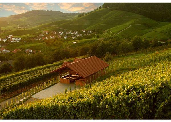 Dasensteinhütte