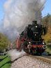 Dampfzug der UEF Sektion Ettlingen mit Dampflok 50 2740