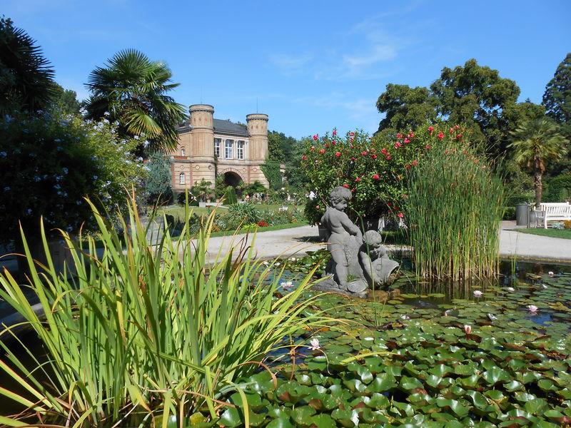 Bon Botanischer Garten Karlsruhe