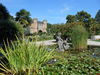Botanischer Garten Seerosen