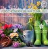 Bühler - Gärtnerei & Floristik