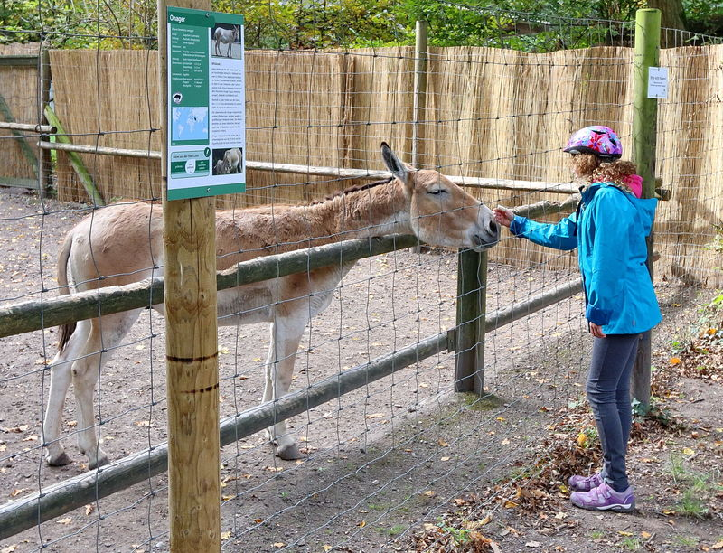 Tierpark Oberwald Karlsruhe