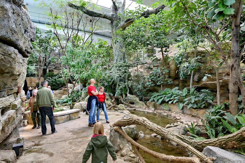 zoologischer stadtgarten karlsruhe urlaubsland baden w rttemberg. Black Bedroom Furniture Sets. Home Design Ideas