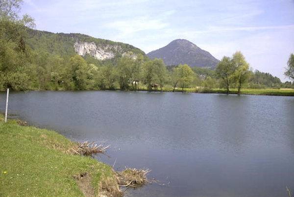 Der Kreuthsee: Ein kleiner Naturbadesee in Kiefersfelden.