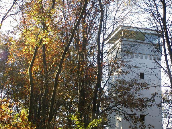 Wienhagener Turm im Herbst