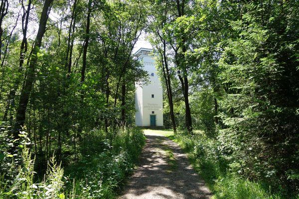 Mitten im Wald auf einer hellen Lichtung steht der Turm