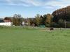 Blick über das Gelände des Ponyhofs in Richtung Kierspe