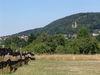 Blick auf die Kirkeler Burg vom Pfälzerwaldvereinsheim