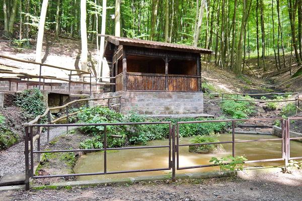 Blick vom Teich auf Schutzhütte