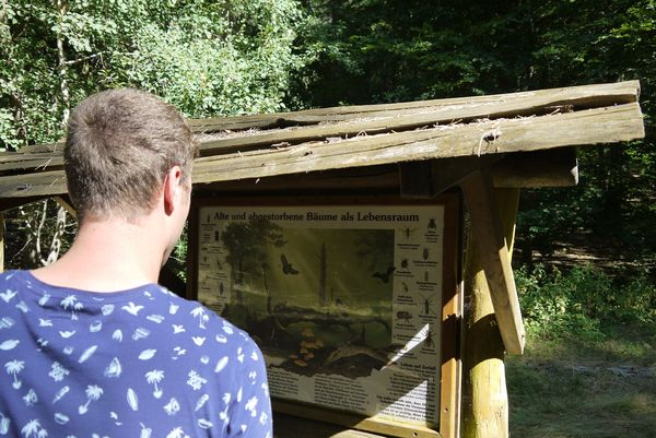 Informationstafeln im Waldklassenzimmer
