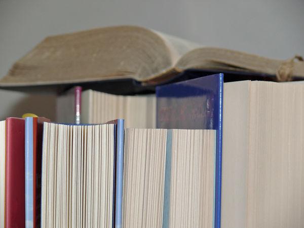 Bücher für Würmer...