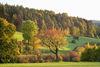 Bei Königstein im Bayerischen Jura