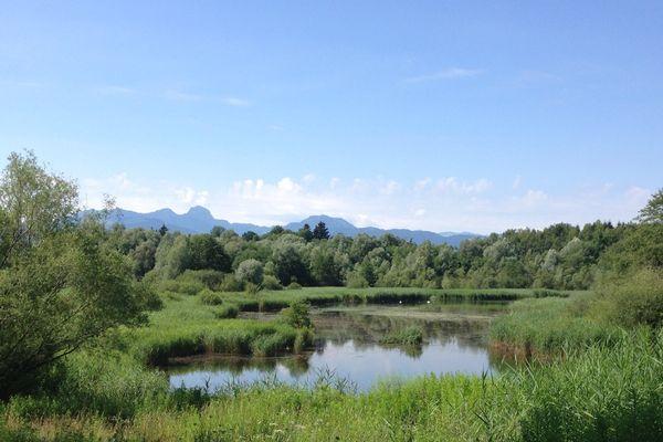 Tonwerkweiher Kolbermoor mit Alpenblick