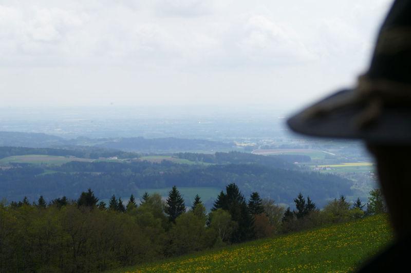 Blick vom Gallnergipfel: hier hat man einen herrlichen Fernblick.