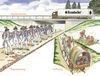 verschiedene Zeitebenen parallel am Krombacher Schlag (Skizze: LWL-Achäologie für Westfalen)