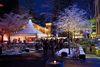 Weihnachtsmarkt Lichterglanz in Dreslers Park mit Beleuchtung