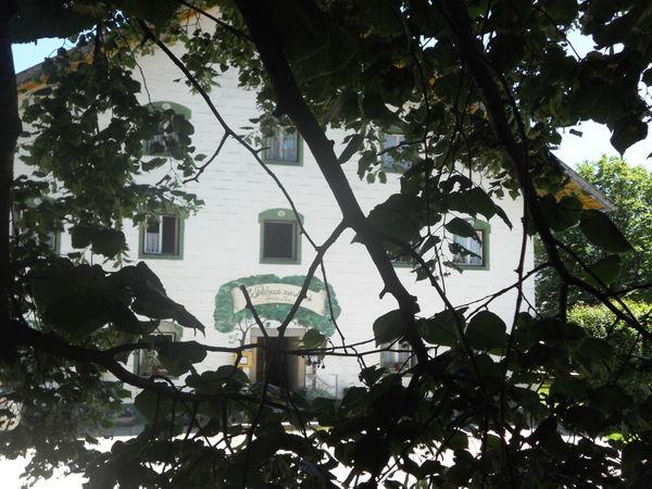 Das älteste Wirtshaus im Landkreis Deggendorf bei der Euschertsfurther Linde