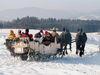Wintertraum bei einer Pferdeschlittenfahrt im Lallinger Winkel
