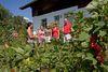 Kräuterführung beim Ferienhof Fernblick in Panholling im Lallinger Winkel