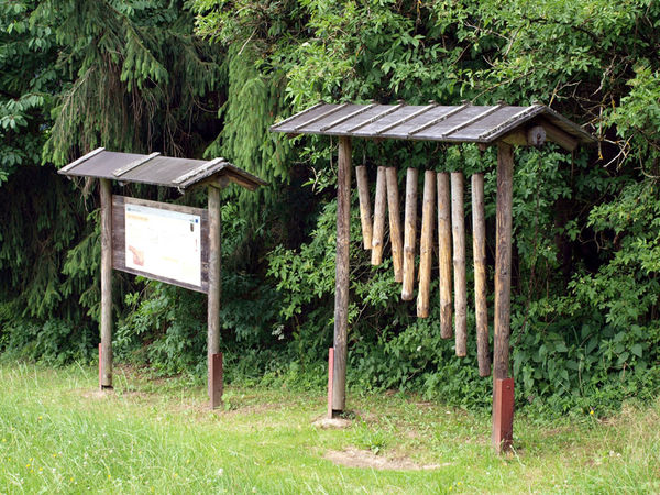 Viele Stationen am Holzweg laden zum Mitmachen ein