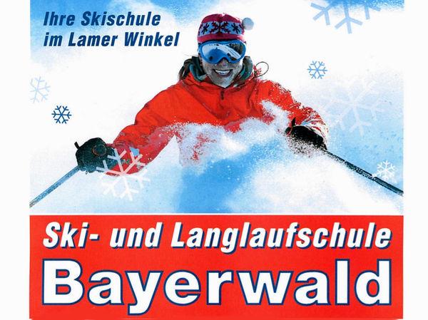 Skikurse und Skiverleih mit der Skischule Bayerwald Lam-Lohberg im Bayerischen Wald