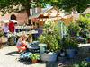 Der Haferlmarkt in Landshut