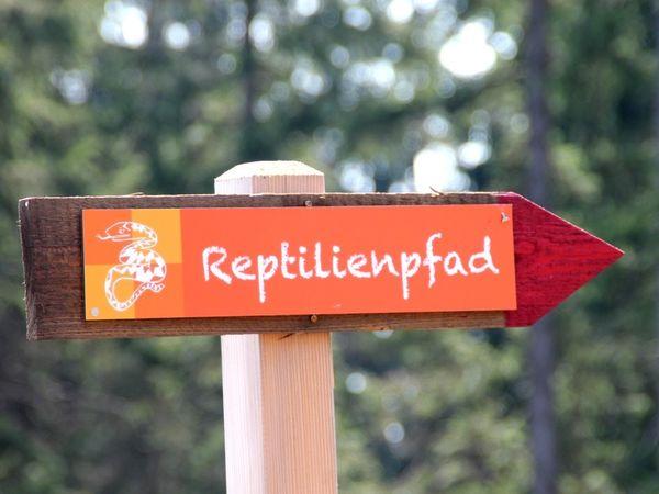 Wegweiser auf dem Reptilien-Pfad im Ferienort Langdorf