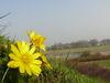 Blick vom Burgberg in Lebus auf die Kirche und die Oder, Foto: Sandra