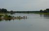 Angeln an der Oder, Foto: TV-SOS
