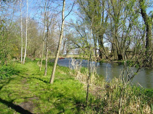 Kanu, Alte Oder, Quappendorf, Seenland Oder-Spree e.V.