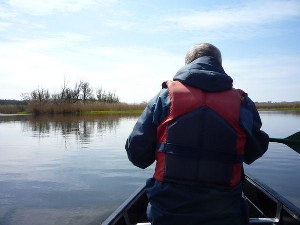 Paddeln, Foto: TV Seenland Oder-Spree e.V.