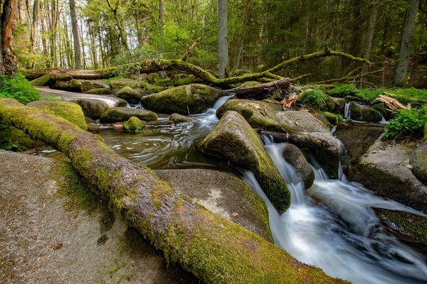 Das Naturschutzgebiet Lerautal bei Leuchtenberg
