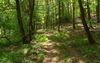 Gamengrund-Wanderweg © Tourismusverein Seenland Oder-Spree e.V.