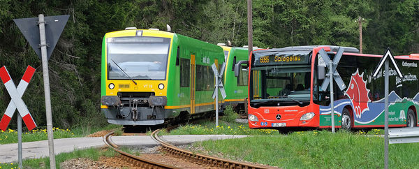 Die wichtigsten Einrichtungen und die Hauptwandergebiete im Nationalpark Bayerischer Wald erreichen Sie bequem mit den Igelbussen und der Waldbahn