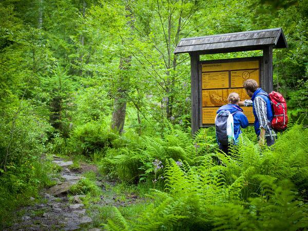 Wissenswertes für Wanderer auf den Infotafeln im Nationalpark Bayerischer Wald
