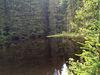 Natur genießen und Ruhe tanken am Großen Falkenstein