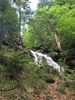 Wanderung zum Großen Falkenstein durch das Urwaldgebiet Höllbachgspreng & Steinbachfälle