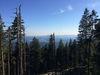 Der Große Falkenstein bietet Wanderern eine tolle Aussicht