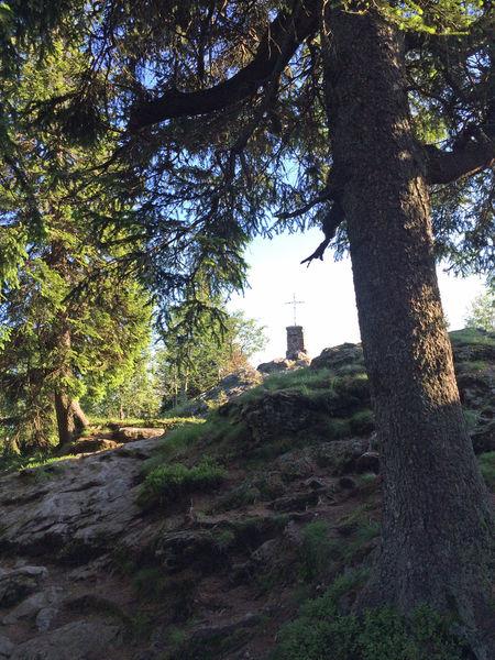Blick auf das Gipfelkreuz am Großen Falkenstein