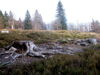 Blick über den Lindbergschachten bei Buchenau im Nationalpark Bayerischer Wald
