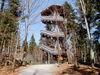Vom Aussichtsturm können Sie die Wölfe im Tierfreigelände bei Ludwigsthal bewundern