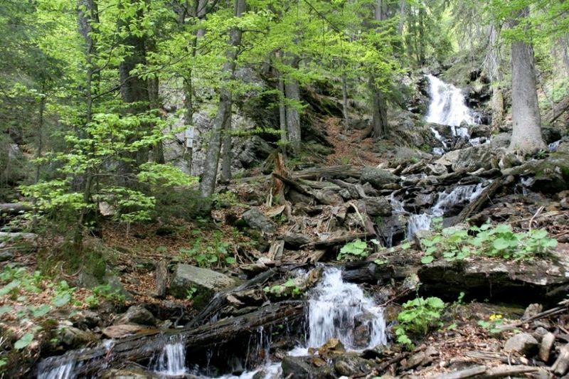 Wasserfall im Urwaldgebiet Höllbachgspreng