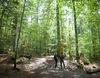 Wandern durch den Urwald im Nationalpark Bayerischer Wald