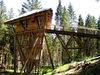 Erlebnis auf dem Baumhaus im Wildniscamp am Falkenstein