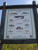 Fischbestand im
