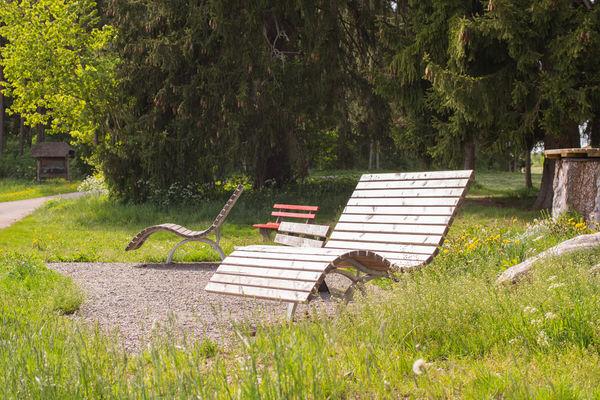 Himmelsliege bei der Grillstelle Seewiese in Bachheim