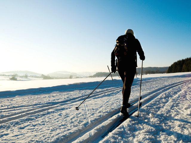 Skiwandern auf der Bayerwaldloipe durch den Bayerischen Wald