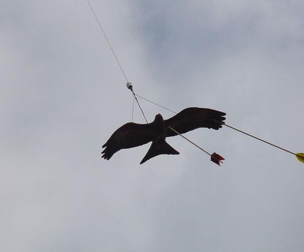 Das Flugziel ist getroffen beim Bogenschießen in Lohberg am Großen Arber