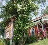 Blühende Obstbäume im Dorfpark in Lohberg am Großen Arber