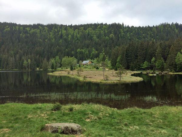 Das Seehäusl liegt idylisch im Naturschutzgebiet am Kleinen Arbersee